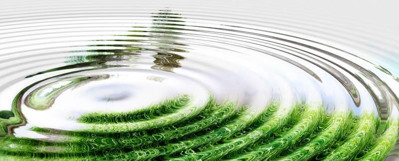 Die Transparenzverordnung – Erste Einblicke in Nachhaltigkeitsthemen bei Lebensversicherern